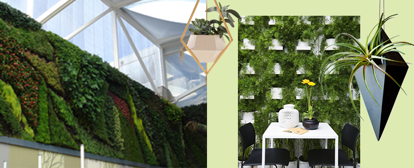 Vertical-Gardening-green-wall-Patrick-Blanc-2