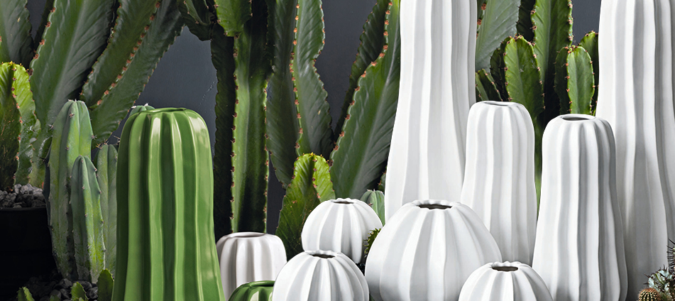 cactus-trend-interior-design-accessory-Header