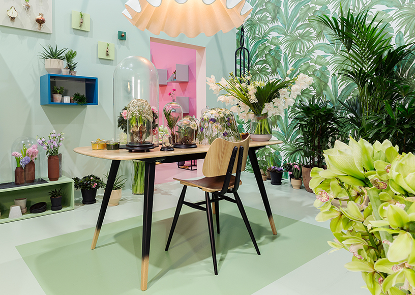 Harmonise-home-biotope-green-furniture