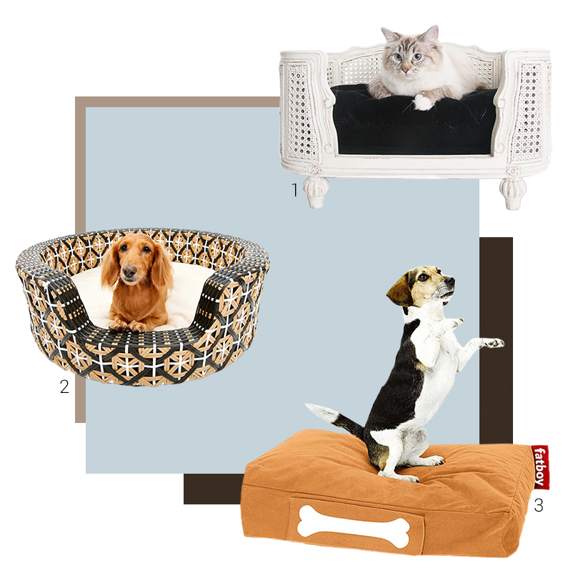 Collage of dog beds and pillows from exhibitors of the Ambiente fair