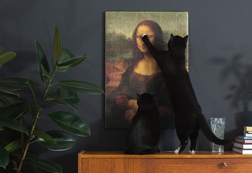 Schwarze Katze spielt mit dem