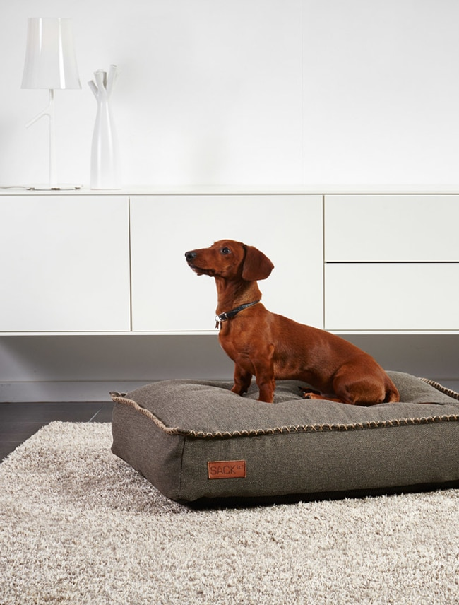 DOGit Cobana dog bed from SACKit