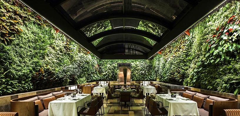 Grüner-Wand-Nopa-Restaurant-Istanbul-5