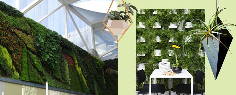 Vertical-Gardening-Grüner-Wand-Patrick-Blanc-2